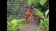 Някъде в джунглата живеейки в колиба