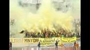 Жълто - черните в Перник