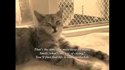 Smile - Просто Се Усмихни... :)
