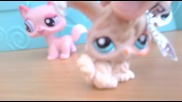 Lps music video-party's in my head