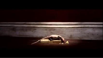 Мишката и капан