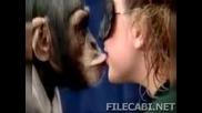 Жени се целуват с маймунки!