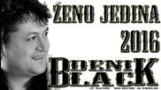 !!! Black Deni 2016 - Zeno Jedina - Prevod