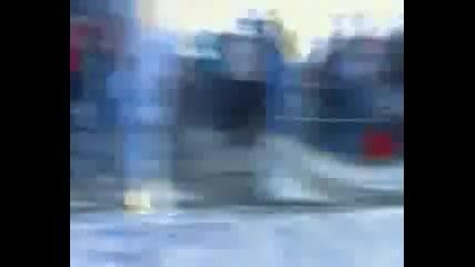 Asenovec tifosi