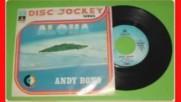 Andy Bono --aloha--1975