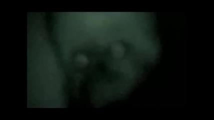 Cекретно Видео На Наса Кадри На Живо Извънземно