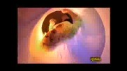 Камелия - Защо Повярвах