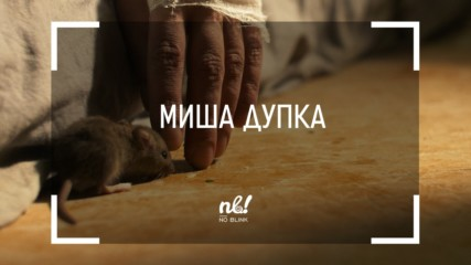 nb! Миша дупка (2019) - къс филм