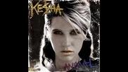 Kesha - Your Love Is My Drug