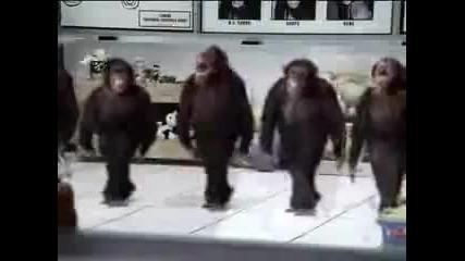 Веторон Monkey - Ела Ела