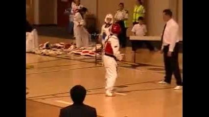 Taekwondo Knockout