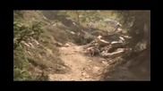 Extreme Downhill - Earthed 3