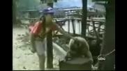 Тази маймунка разбива от смях ..