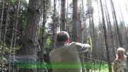 Свободни да виждаме истината... за гората
