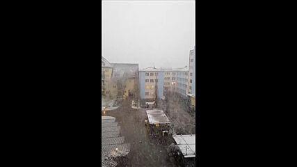 """От """"Моята новина"""": Снежна буря в Германия"""