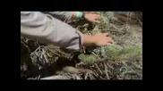 Човекът срещу природата - Сезон 5 епизод 1 (част 2)