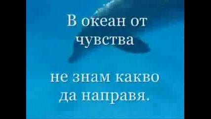 Океан От Чувства