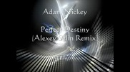 Adam Nickley - Perfect Destiny