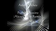Adam Nickley - Perfect Destiny