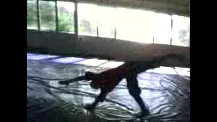 Gimnastik