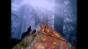 Bate Pe6o Ft. Tina-Wolf