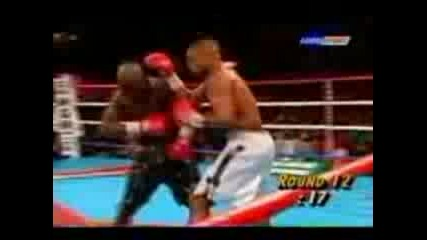 Boxing Brutallity The Best Knock Outs