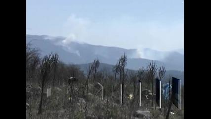Пожар на българо-гръцката граница