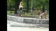K1pene Na Belite Brezi V Plovdiv