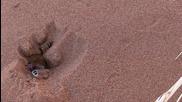 Намибия - Пясъчно Море