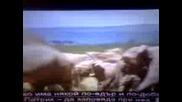 Слонове Се Клецат