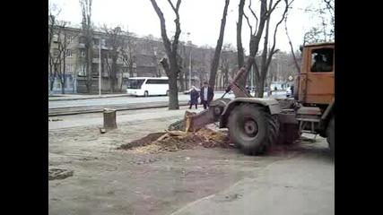 Трактор пили дърво