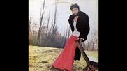 Zlatko Pejakovi i Korni grupa - Dnevnik Laura 1976