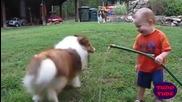 Обич между деца и кучета