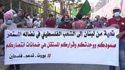 Lebanon: Hundreds attend pro-Palestine demo in Beirut