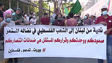 Lebanon: Hundreds attend pro-Palestine demo in Beirut