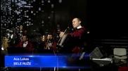 Zorica Brunclik i Aca Lukas - Pesma od bola, Bele ruze - (Live) - (Arena 11.11.2014.)