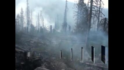 Разследва се причината на пожара във Витоша