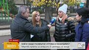 МАСОВО ОТРАВЯНЕ: Намериха мъртви кучета в центъра на Пазарджик
