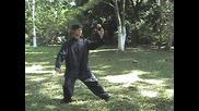 Tai Chi Chuan – Kung Fu Interno