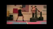 Taekwondo Kickboxing Training