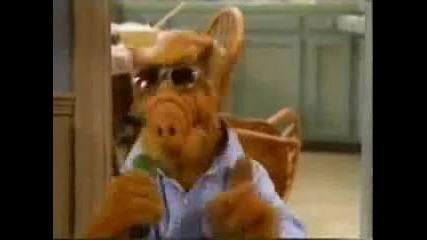 Alf Parody