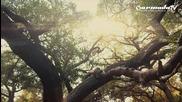 Cerf, Mitiska _ Jaren with Rank 1 - Witness (official Music video )