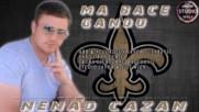 Nenad Cazan Ma Bace Gandu