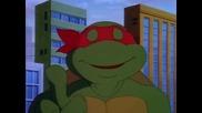 Nindza kornjace 35 - Kornjace svuda kornjace