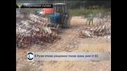 Руските власти са конфискували и  унищожили около 600  тона хранителни продукти от ЕС през последните два дни