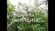 Vesna - Кога Замиришат Люляците - Превод