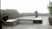 Dvs Skate - доказана скейт марка за кецове