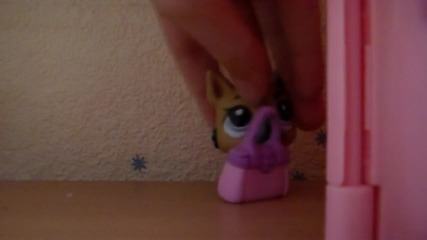 Lps-live like a star(episode 5)