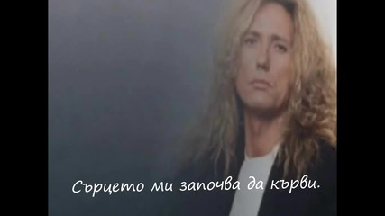 Whitesnake - All I Want Is You