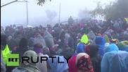 Бежанци в Сърбия се опитват да минат през верига от полицаи на границата с Хърватия
